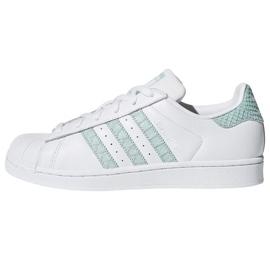 Hvid Adidas Originals Superstar sko i CG5461