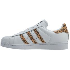 Hvid Adidas Originals Superstar sko W CQ2514