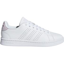 Adidas Advantage W F36481 sko hvid