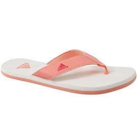 Appelsin Flip-flops adidas Beach Thong 2 Jr CP9379