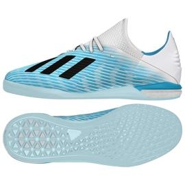 Indendørs sko adidas X 19.1 I M G25754