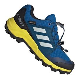 Blå Adidas Terrex Gtx Jr BC0599 sko