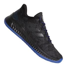 Adidas Harden B / EXM F97250 sko