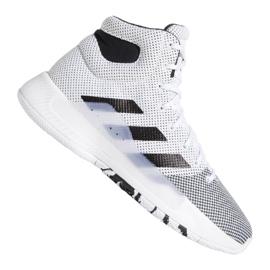 Adidas Pro Bounce Madness 2019 M BB9235 sko