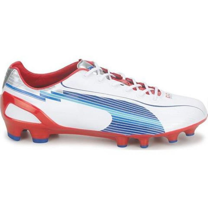 Puma Evo Speed 1 Fg M 102527 01 fodboldsko hvid hvid