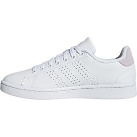 Adidas Advantage W F36481 sko hvid 2